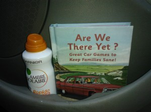 sun tan lotion and book in door pocket of car
