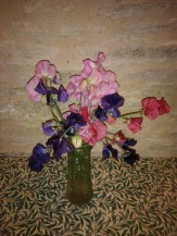 Sweet peas from my garden