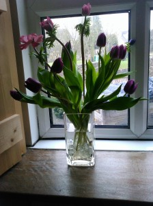 Tulips and anemones loosely placed in a glass vase, arrange themselves