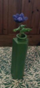 Single anemone in a green IKEA vase