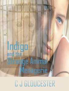 Indigo book cover kindle 2MB