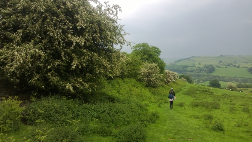 Half term May 2014 Offa's Dyke Path - Copy