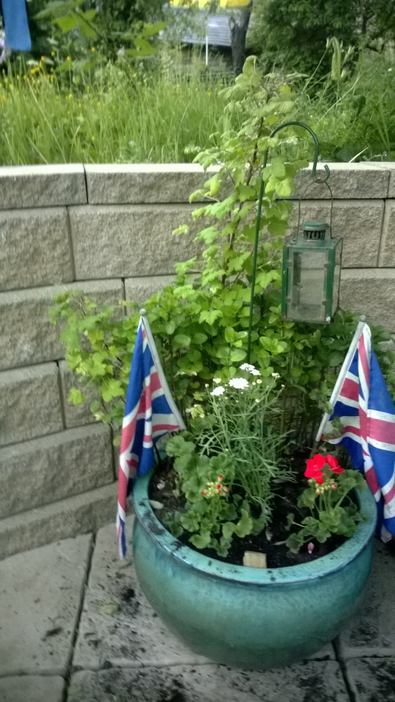 Tub of mint, geranium and flags