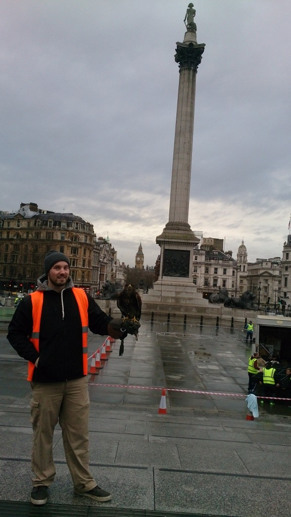 Photo of man with bird of prey in Trafalgar Square, London
