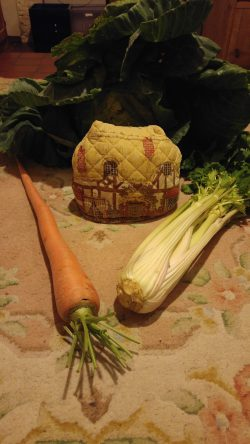 photo of giant vegetables next to model house