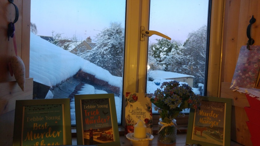 Photo of view of snow from my study window