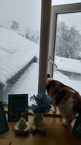 dorothy looking out of the window at the snow