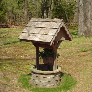 image of wishing well in a forest
