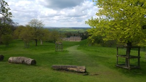 photo of Dyrham Park manor in deer park