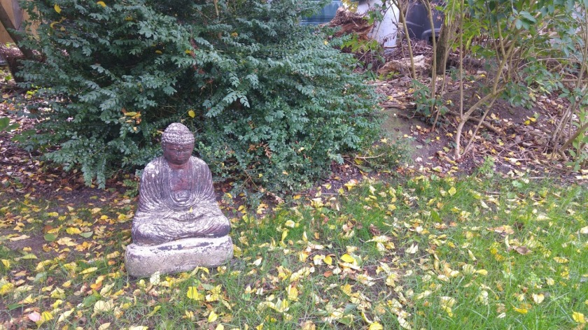image of Buddha statue among autumn leaves